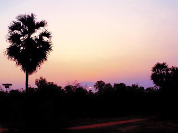 sunset, auroville 31 dec 2014